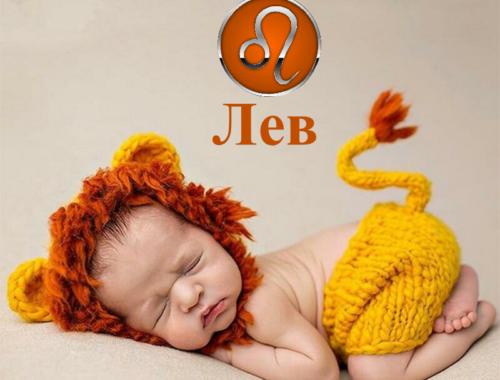 Как воспитывать детей львов